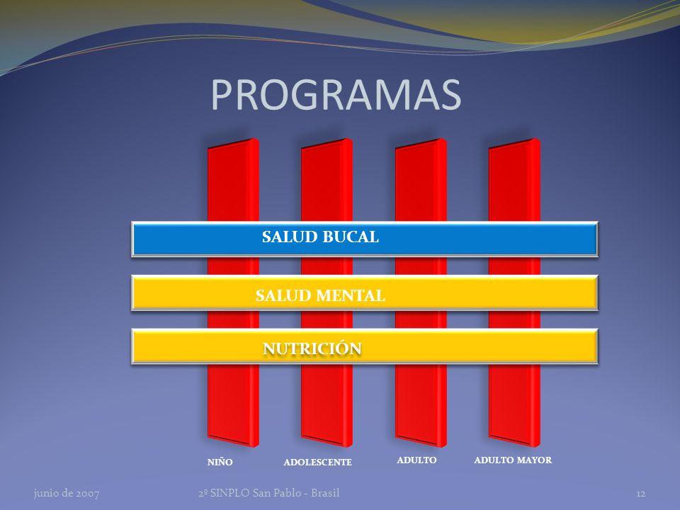 PROGRAMAS SALUD BUCAL NIÑO ADOLESCENTE ADULTOADULTO MAYOR SALUD MENTAL NUTRICIÓN junio de 20072º SINPLO San Pablo - Brasil12