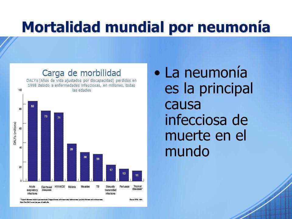 Mortalidad mundial por neumonía La neumonía es la principal causa infecciosa de muerte en el mundo Carga de morbilidad DALYs (Años de vida ajustados p