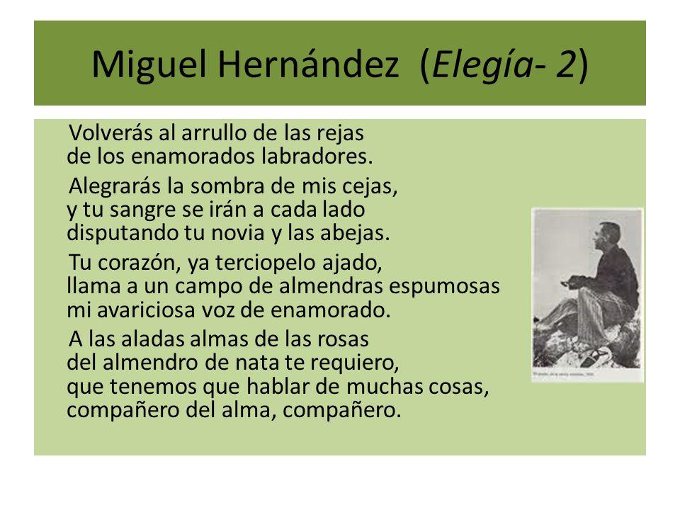 Miguel Hernández (Elegía- 2) Volverás al arrullo de las rejas de los enamorados labradores. Alegrarás la sombra de mis cejas, y tu sangre se irán a ca