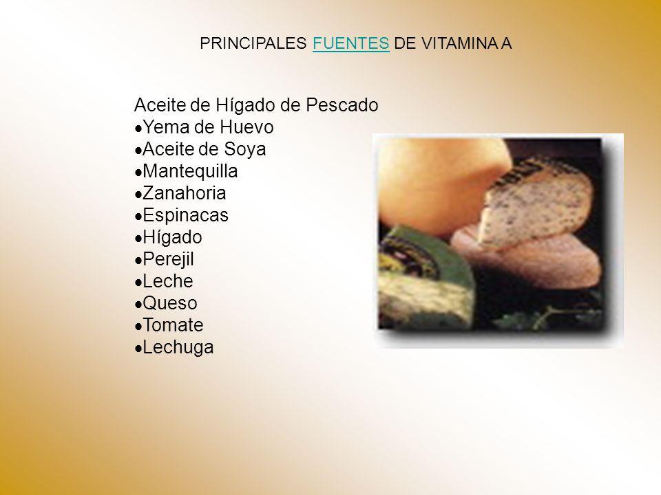 PRINCIPALES FUENTES DE VITAMINA AFUENTES Aceite de Hígado de Pescado Yema de Huevo Aceite de Soya Mantequilla Zanahoria Espinacas Hígado Perejil Leche