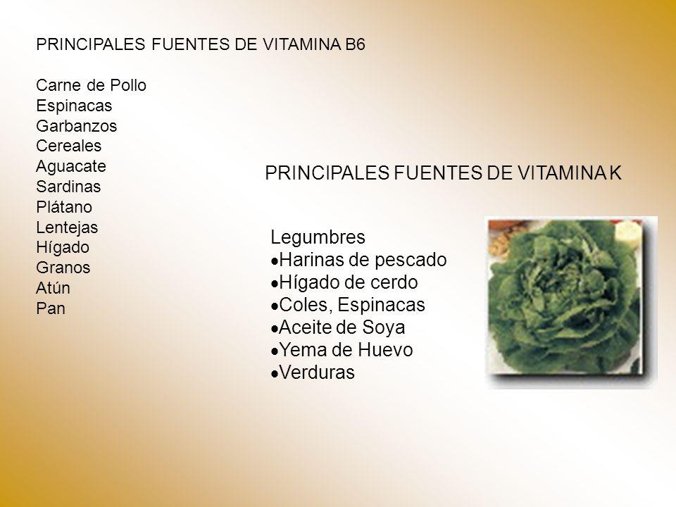 PRINCIPALES FUENTES DE VITAMINA K Legumbres Harinas de pescado Hígado de cerdo Coles, Espinacas Aceite de Soya Yema de Huevo Verduras PRINCIPALES FUEN
