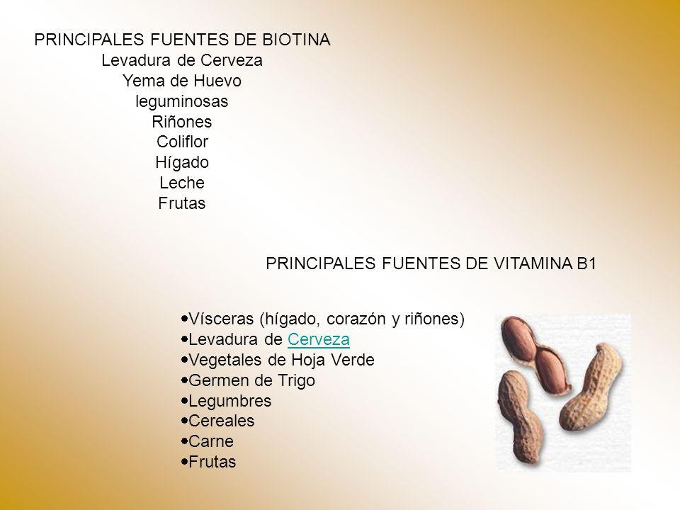 PRINCIPALES FUENTES DE VITAMINA B1 Vísceras (hígado, corazón y riñones) Levadura de CervezaCerveza Vegetales de Hoja Verde Germen de Trigo Legumbres Cereales Carne Frutas PRINCIPALES FUENTES DE BIOTINA Levadura de Cerveza Yema de Huevo leguminosas Riñones Coliflor Hígado Leche Frutas
