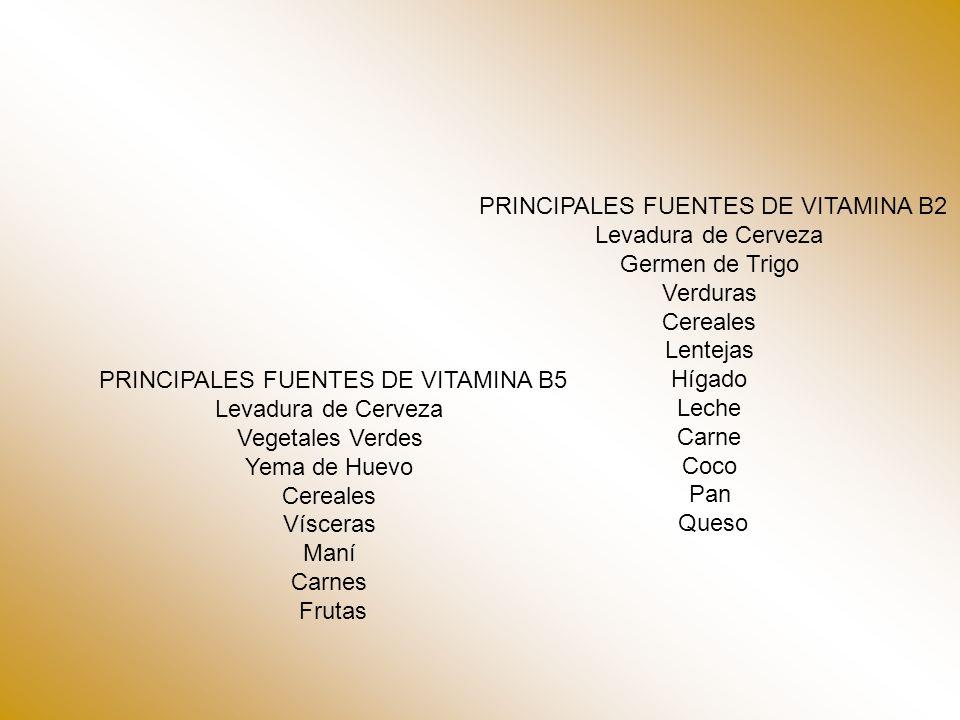 PRINCIPALES FUENTES DE VITAMINA B2 Levadura de Cerveza Germen de Trigo Verduras Cereales Lentejas Hígado Leche Carne Coco Pan Queso PRINCIPALES FUENTES DE VITAMINA B5 Levadura de Cerveza Vegetales Verdes Yema de Huevo Cereales Vísceras Maní Carnes Frutas