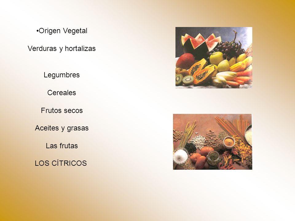 Origen Vegetal Verduras y hortalizas Legumbres Cereales Frutos secos Aceites y grasas Las frutas LOS CÍTRICOS