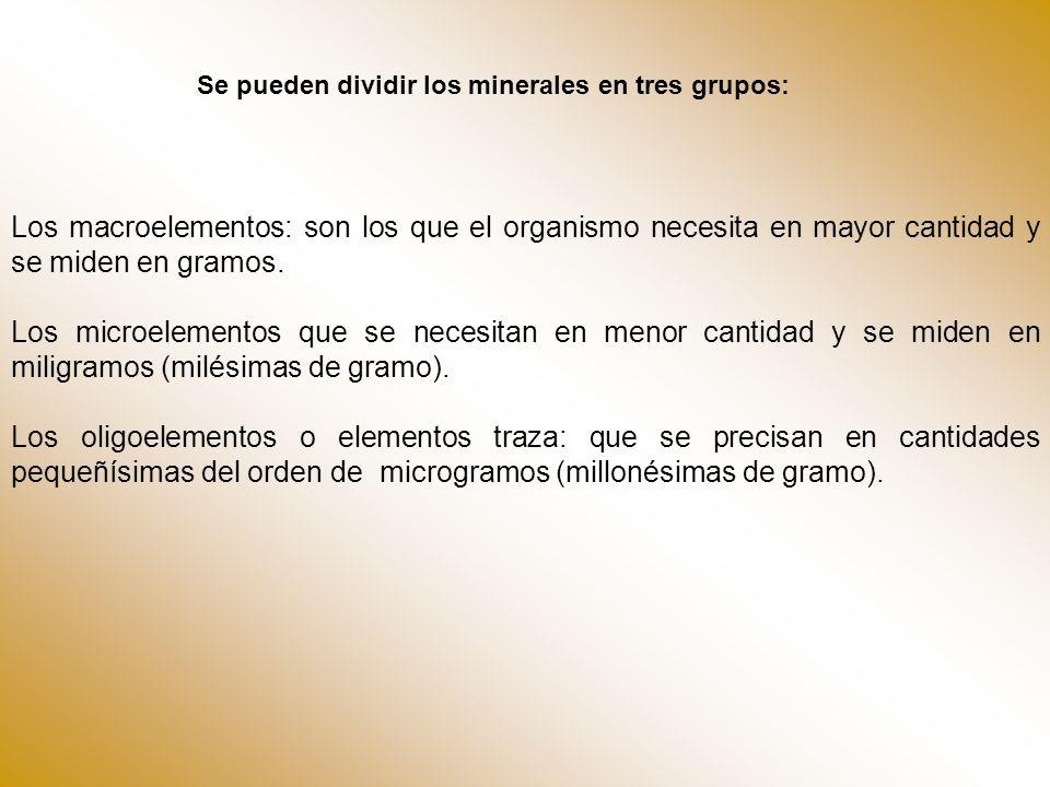 Se pueden dividir los minerales en tres grupos: Los macroelementos: son los que el organismo necesita en mayor cantidad y se miden en gramos. Los micr