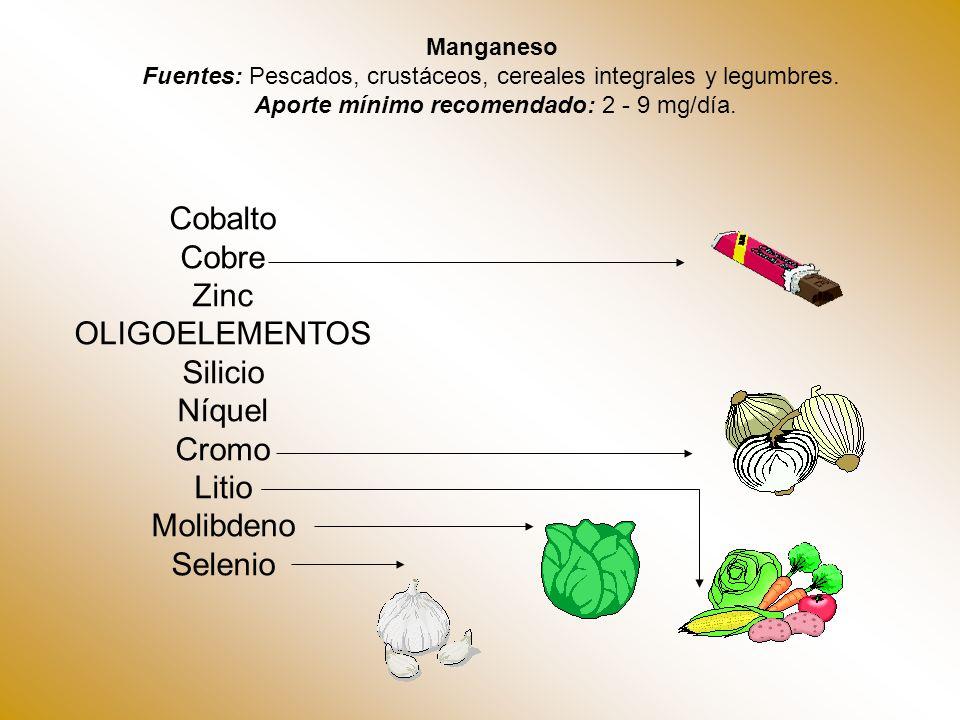 Manganeso Fuentes: Pescados, crustáceos, cereales integrales y legumbres. Aporte mínimo recomendado: 2 - 9 mg/día. Cobalto Cobre Zinc OLIGOELEMENTOS S