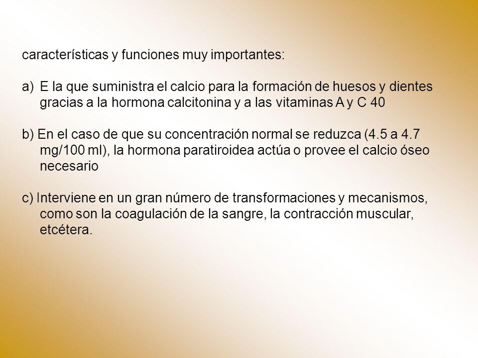características y funciones muy importantes: a)E la que suministra el calcio para la formación de huesos y dientes gracias a la hormona calcitonina y