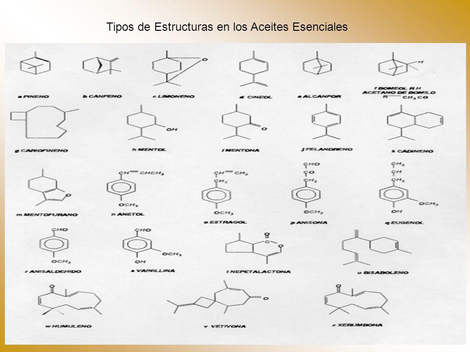 Tipos de Estructuras en los Aceites Esenciales