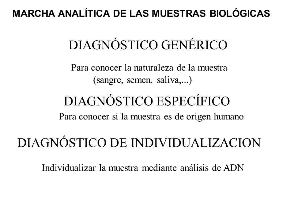 MARCHA ANALÍTICA DE LAS MUESTRAS BIOLÓGICAS DIAGNÓSTICO GENÉRICO Para conocer la naturaleza de la muestra (sangre, semen, saliva,...) DIAGNÓSTICO ESPE