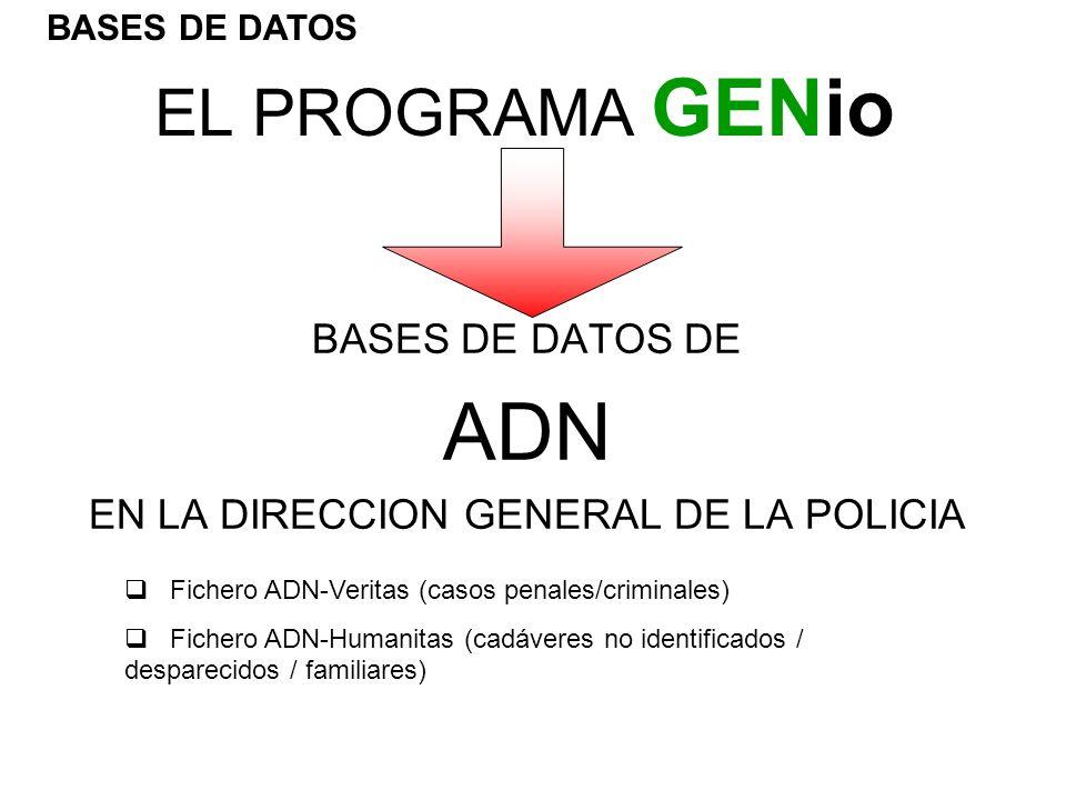 EL PROGRAMA GENio BASES DE DATOS DE ADN EN LA DIRECCION GENERAL DE LA POLICIA Fichero ADN-Veritas (casos penales/criminales) Fichero ADN-Humanitas (ca