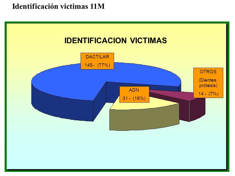 DACTILAR 145 - (77%) ADN 31 - (16%) OTROS (Dientes, prótesis) 14 - (7%) IDENTIFICACION VICTIMAS Identificación victimas 11M