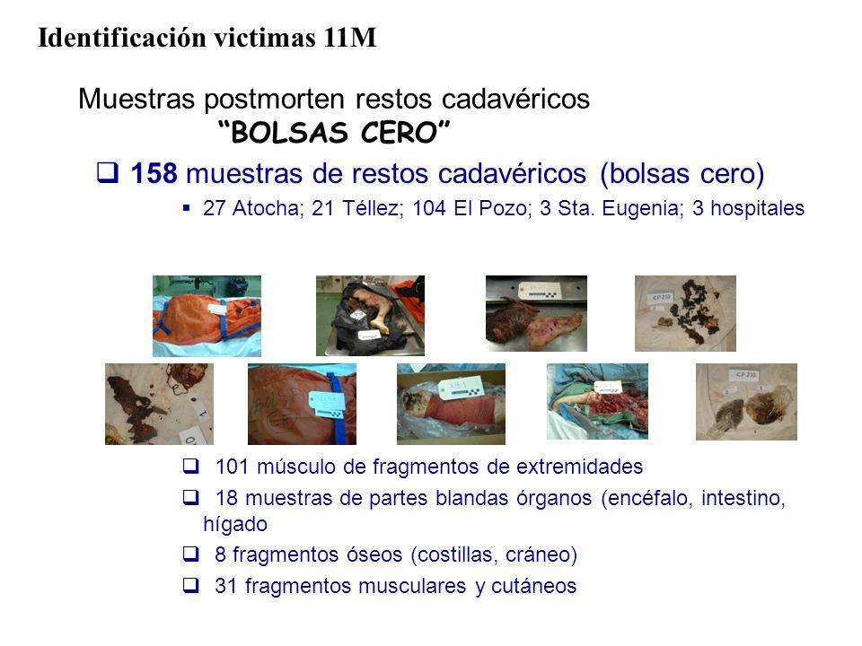 Muestras postmorten restos cadavéricos BOLSAS CERO 158 muestras de restos cadavéricos (bolsas cero) 27 Atocha; 21 Téllez; 104 El Pozo; 3 Sta. Eugenia;
