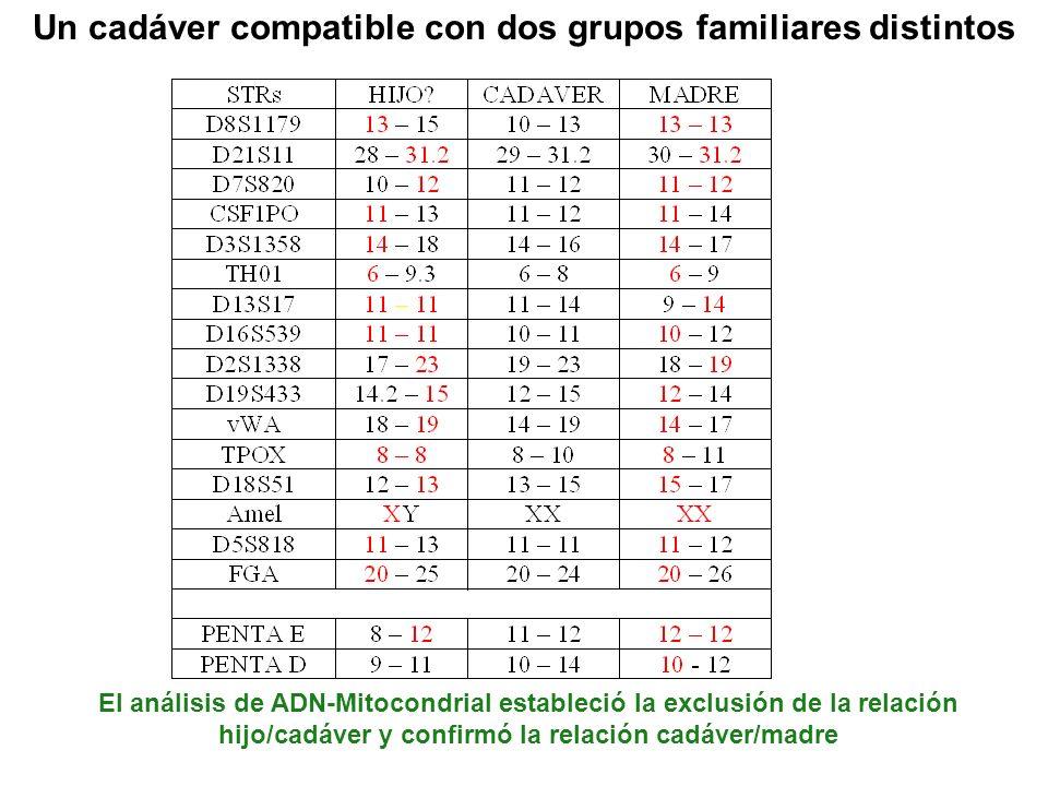 Un cadáver compatible con dos grupos familiares distintos El análisis de ADN-Mitocondrial estableció la exclusión de la relación hijo/cadáver y confir