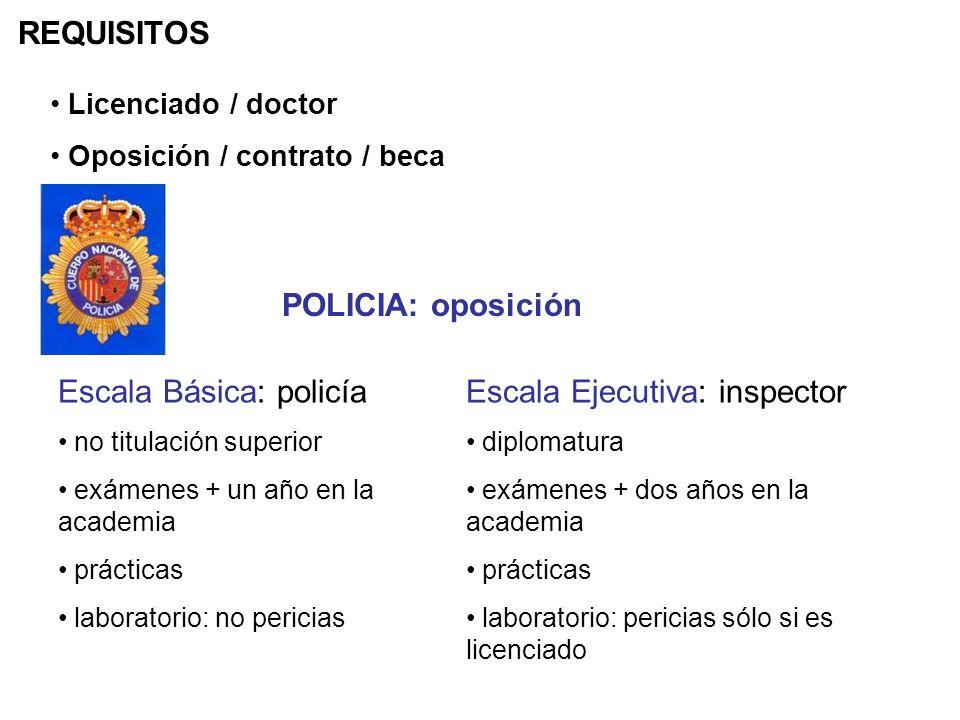 REQUISITOS Licenciado / doctor Oposición / contrato / beca Escala Básica: policía no titulación superior exámenes + un año en la academia prácticas la
