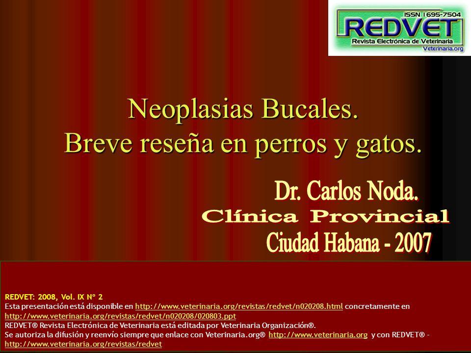 Neoplasias Bucales. Breve reseña en perros y gatos. REDVET: 2008, Vol. IX Nº 2 Esta presentación está disponible en http://www.veterinaria.org/revista