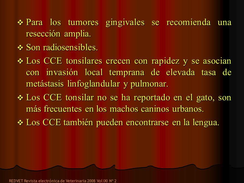 Para los tumores gingivales se recomienda una resección amplia. Para los tumores gingivales se recomienda una resección amplia. Son radiosensibles. So