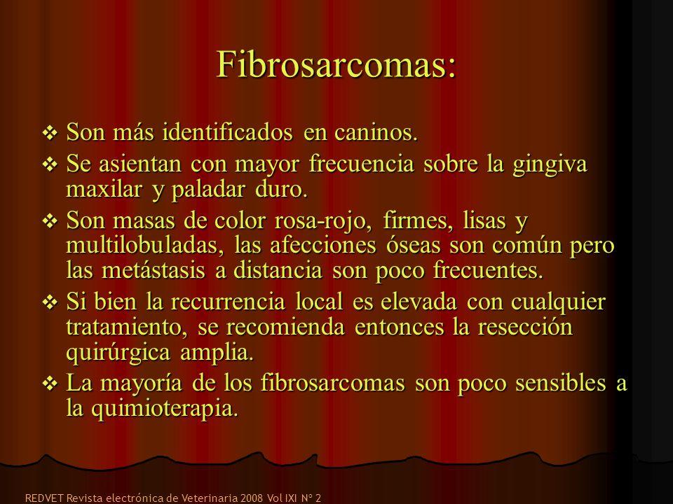 Fibrosarcomas: Son más identificados en caninos. Son más identificados en caninos. Se asientan con mayor frecuencia sobre la gingiva maxilar y paladar
