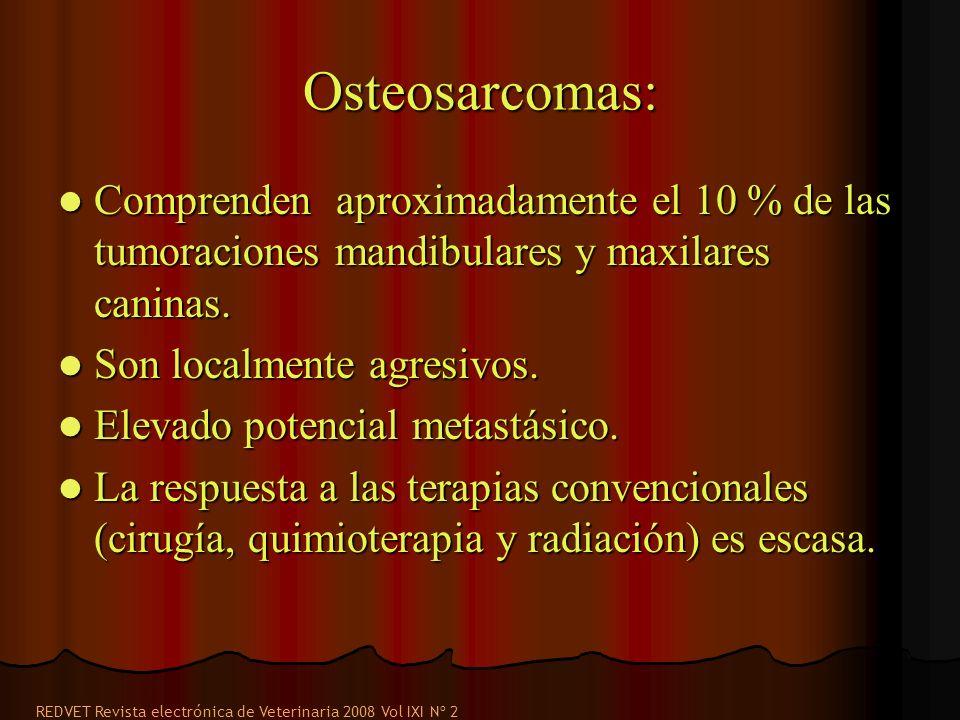 Osteosarcomas: Comprenden aproximadamente el 10 % de las tumoraciones mandibulares y maxilares caninas. Comprenden aproximadamente el 10 % de las tumo
