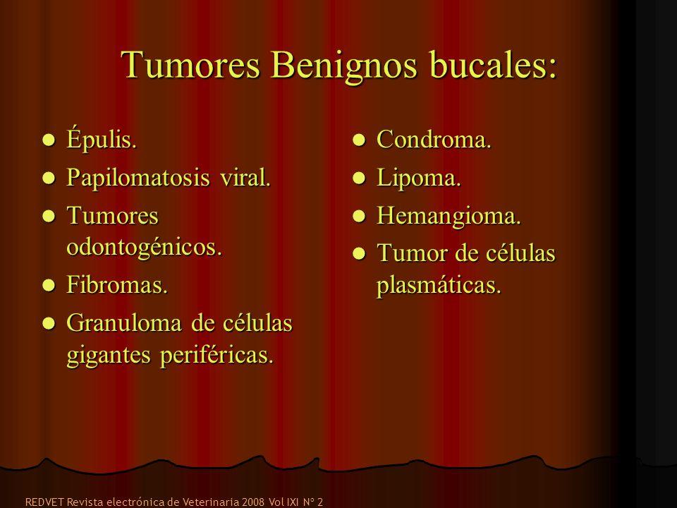 Tumores Benignos bucales: Épulis. Épulis. Papilomatosis viral. Papilomatosis viral. Tumores odontogénicos. Tumores odontogénicos. Fibromas. Fibromas.