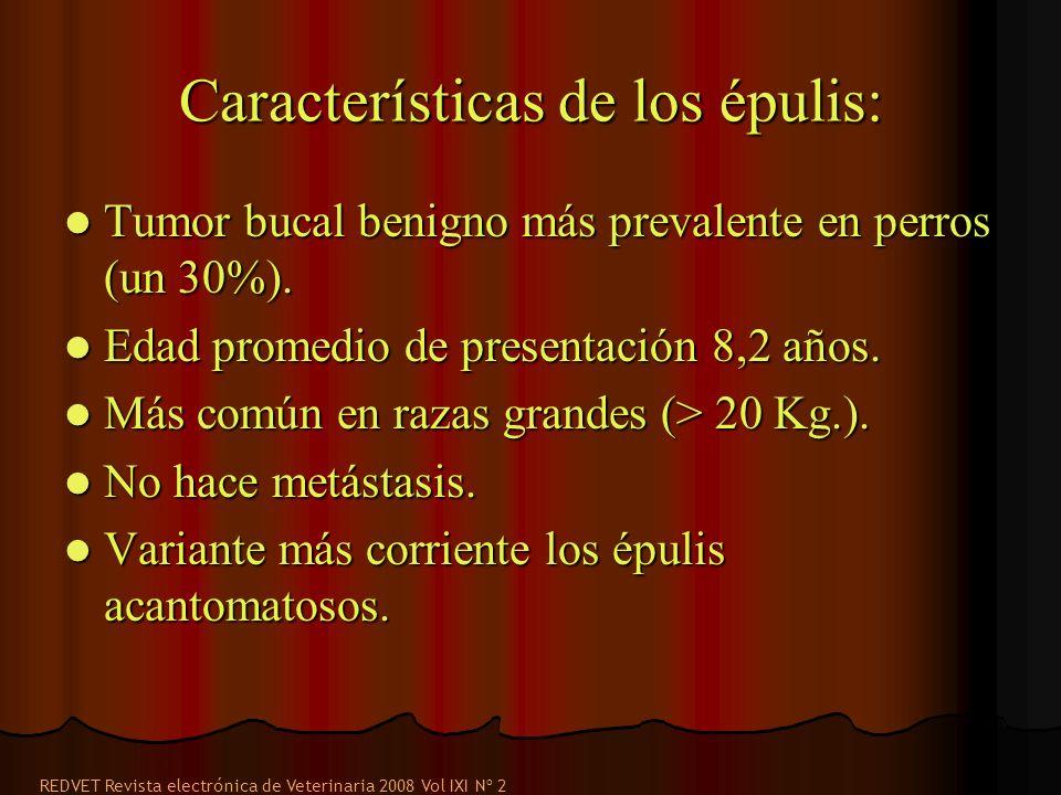 Características de los épulis: Tumor bucal benigno más prevalente en perros (un 30%). Tumor bucal benigno más prevalente en perros (un 30%). Edad prom