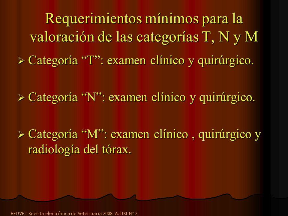 Requerimientos mínimos para la valoración de las categorías T, N y M Categoría T: examen clínico y quirúrgico. Categoría T: examen clínico y quirúrgic