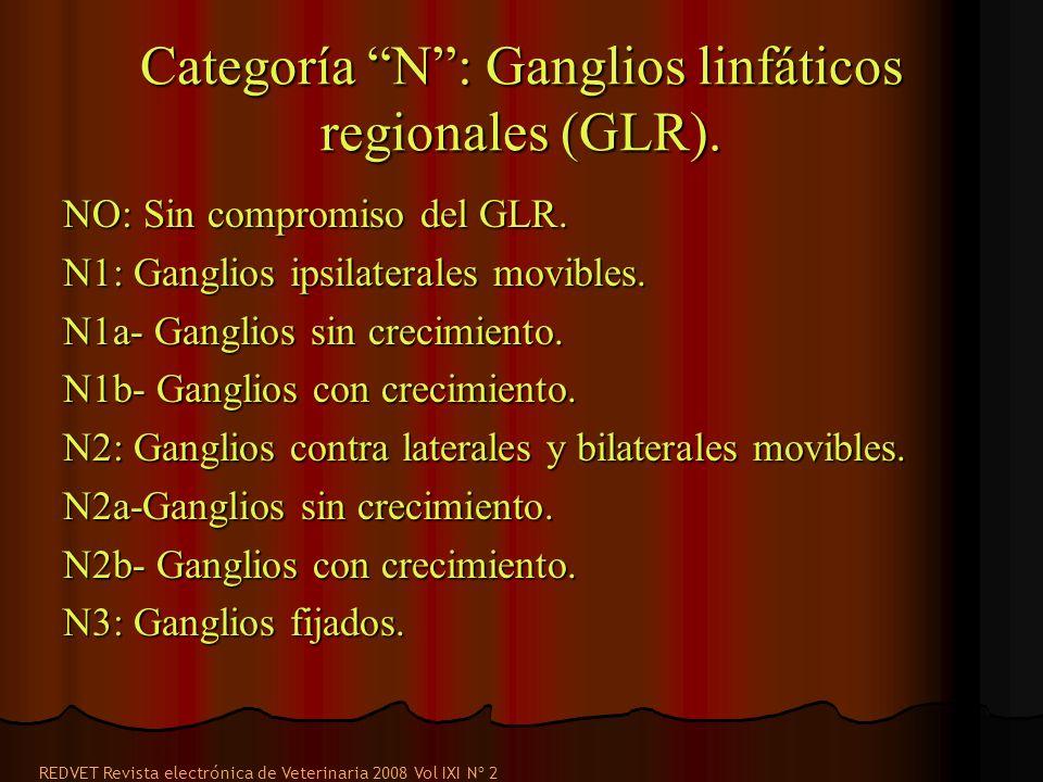 Categoría N: Ganglios linfáticos regionales (GLR). NO: Sin compromiso del GLR. N1: Ganglios ipsilaterales movibles. N1a- Ganglios sin crecimiento. N1b