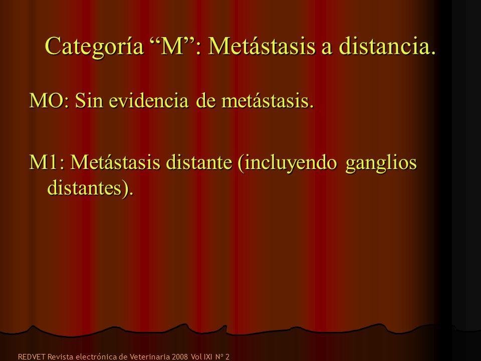 Categoría M: Metástasis a distancia. MO: Sin evidencia de metástasis. M1: Metástasis distante (incluyendo ganglios distantes). REDVET Revista electrón