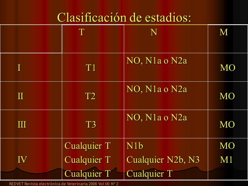 T N M I T1 T1 NO, N1a o N2a MO MO II II T2 T2 NO, N1a o N2a MO MO III III T3 T3 NO, N1a o N2a MO MO IV IV Cualquier T N1b Cualquier N2b, N3 Cualquier