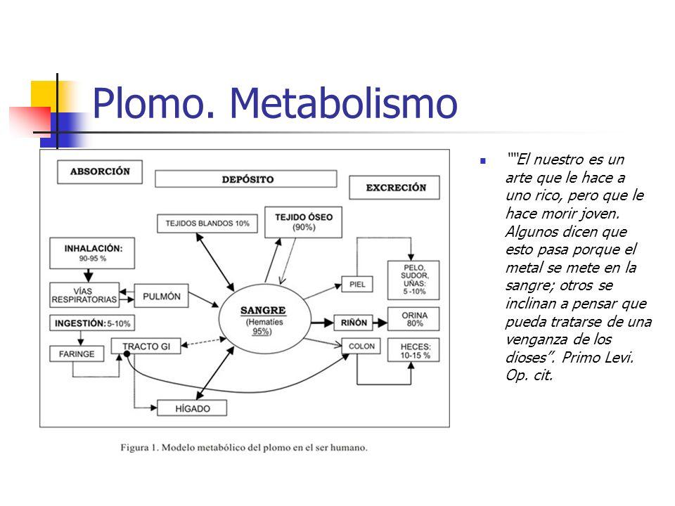 Plomo. Metabolismo El nuestro es un arte que le hace a uno rico, pero que le hace morir joven. Algunos dicen que esto pasa porque el metal se mete en