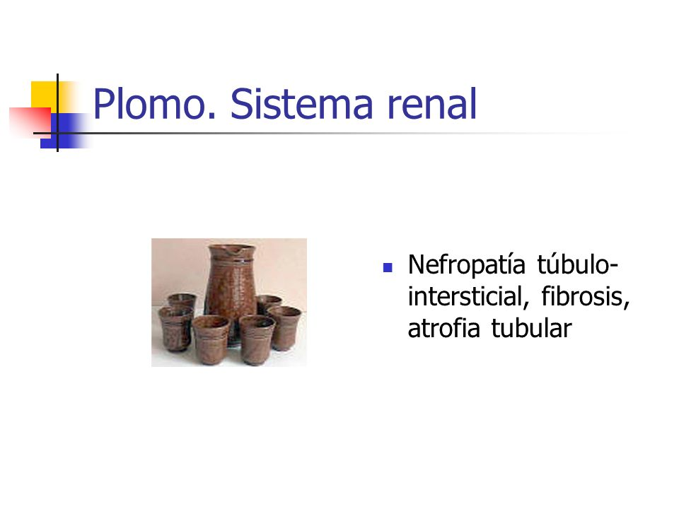 Plomo. Sistema renal Nefropatía túbulo- intersticial, fibrosis, atrofia tubular