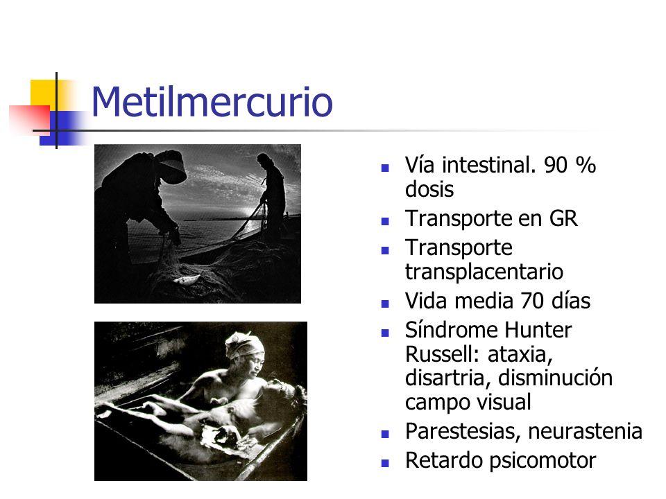 Metilmercurio Vía intestinal. 90 % dosis Transporte en GR Transporte transplacentario Vida media 70 días Síndrome Hunter Russell: ataxia, disartria, d