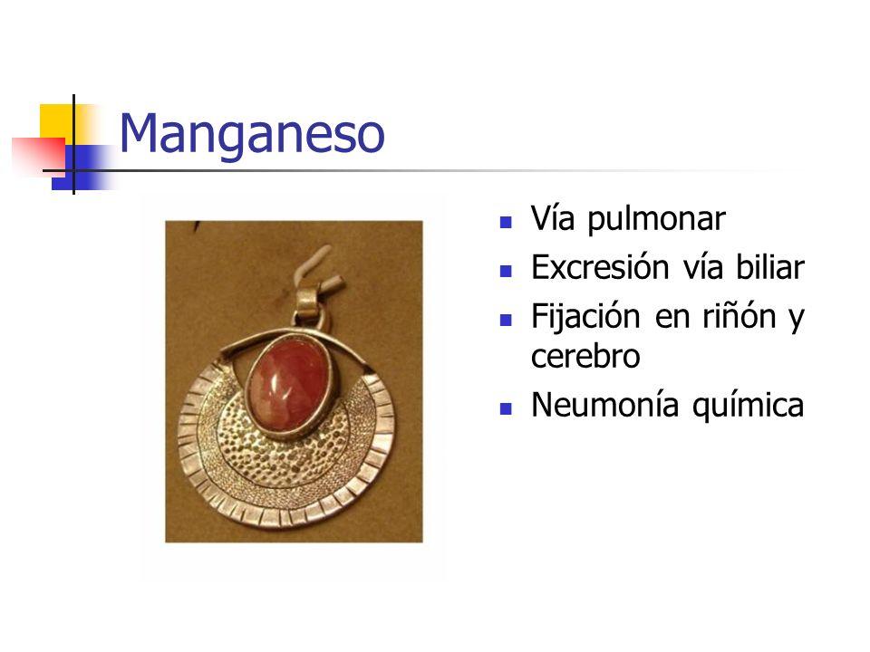 Manganeso Vía pulmonar Excresión vía biliar Fijación en riñón y cerebro Neumonía química