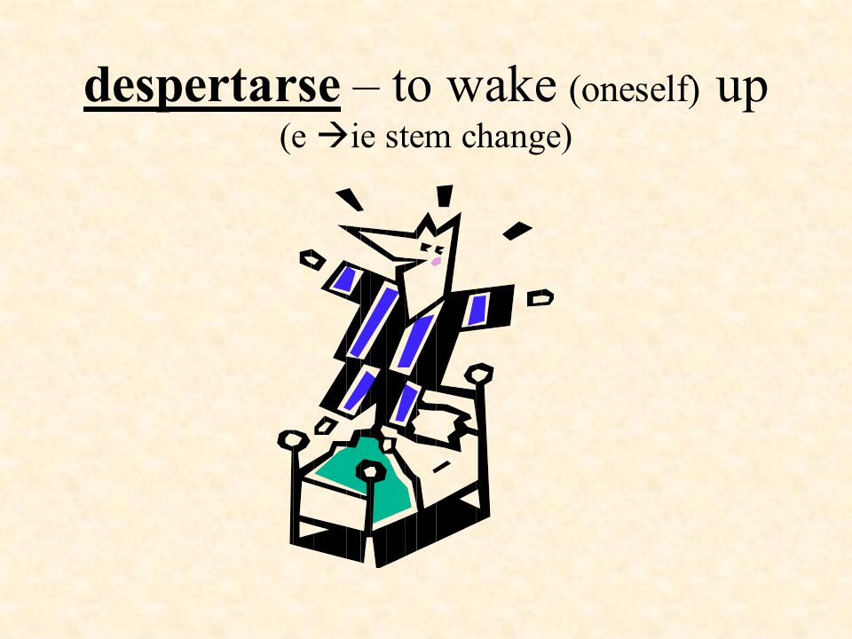 despertarse – to wake (oneself) up (e ie stem change)