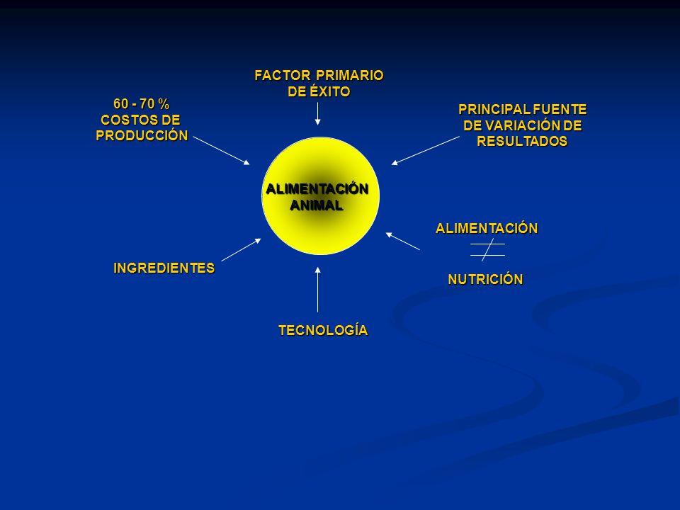 ALIMENTACIÓNANIMAL 60 - 70 % COSTOS DE PRODUCCIÓN FACTOR PRIMARIO DE ÉXITO PRINCIPAL FUENTE DE VARIACIÓN DE RESULTADOS ALIMENTACIÓN NUTRICIÓN INGREDIE