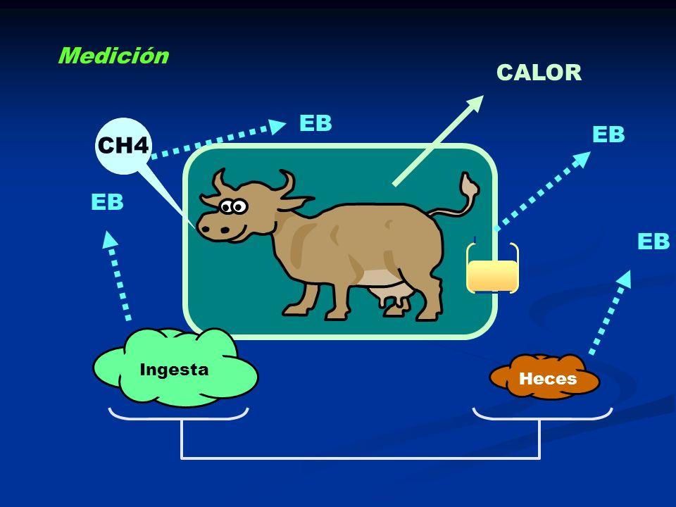 CALOR Ingesta Heces EB CH4 EB Medición