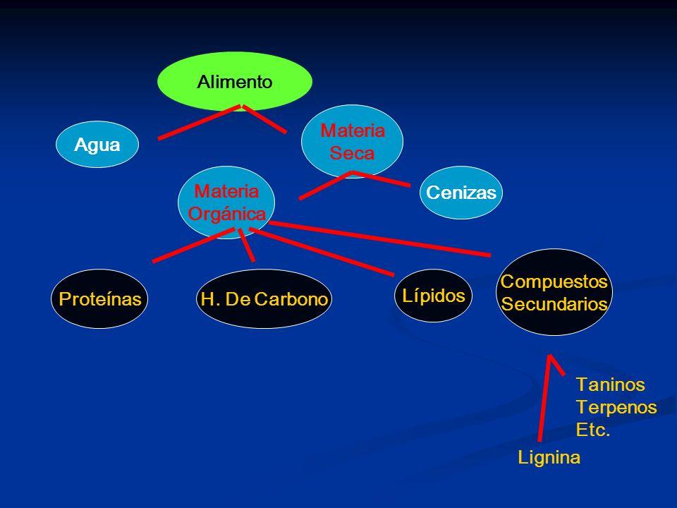 Alimento Agua Materia Seca Materia Orgánica Cenizas Lignina Taninos Terpenos Etc. Compuestos Secundarios Lípidos H. De CarbonoProteínas