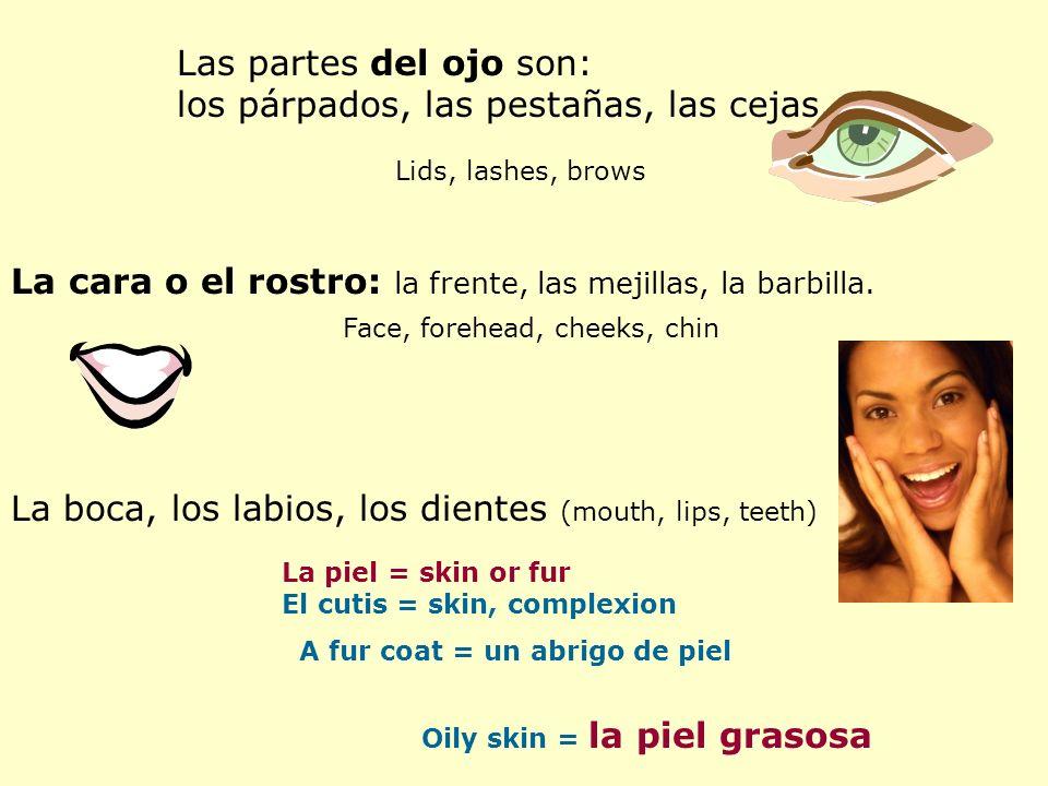 Las partes del ojo son: los párpados, las pestañas, las cejas. Lids, lashes, brows La cara o el rostro: la frente, las mejillas, la barbilla. Face, fo