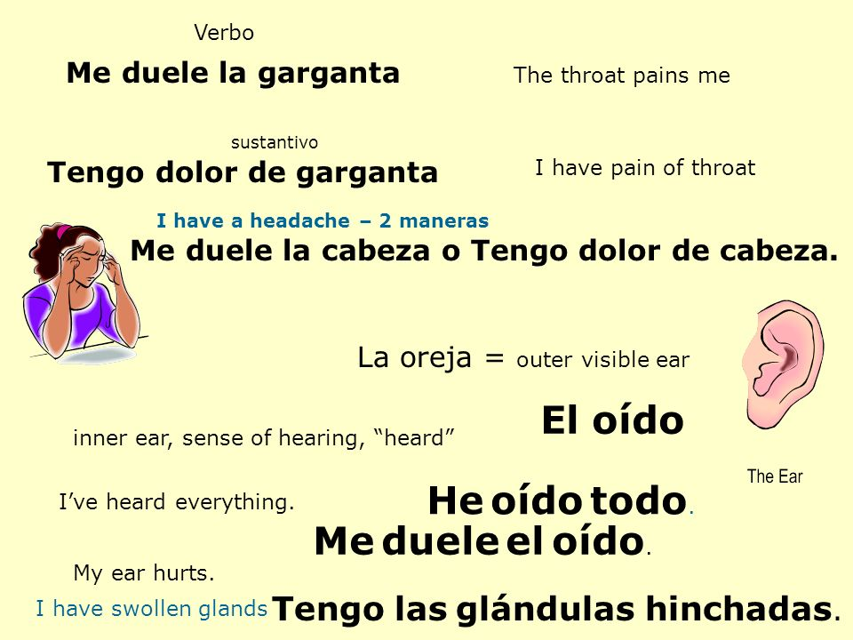 Verbo Me duele la garganta The throat pains me Tengo dolor de garganta sustantivo I have pain of throat Me duele la cabeza o Tengo dolor de cabeza. La