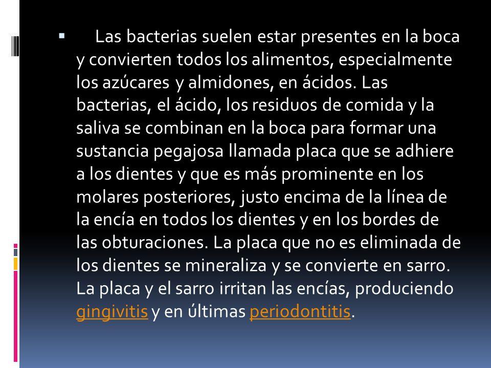 Las bacterias suelen estar presentes en la boca y convierten todos los alimentos, especialmente los azúcares y almidones, en ácidos.