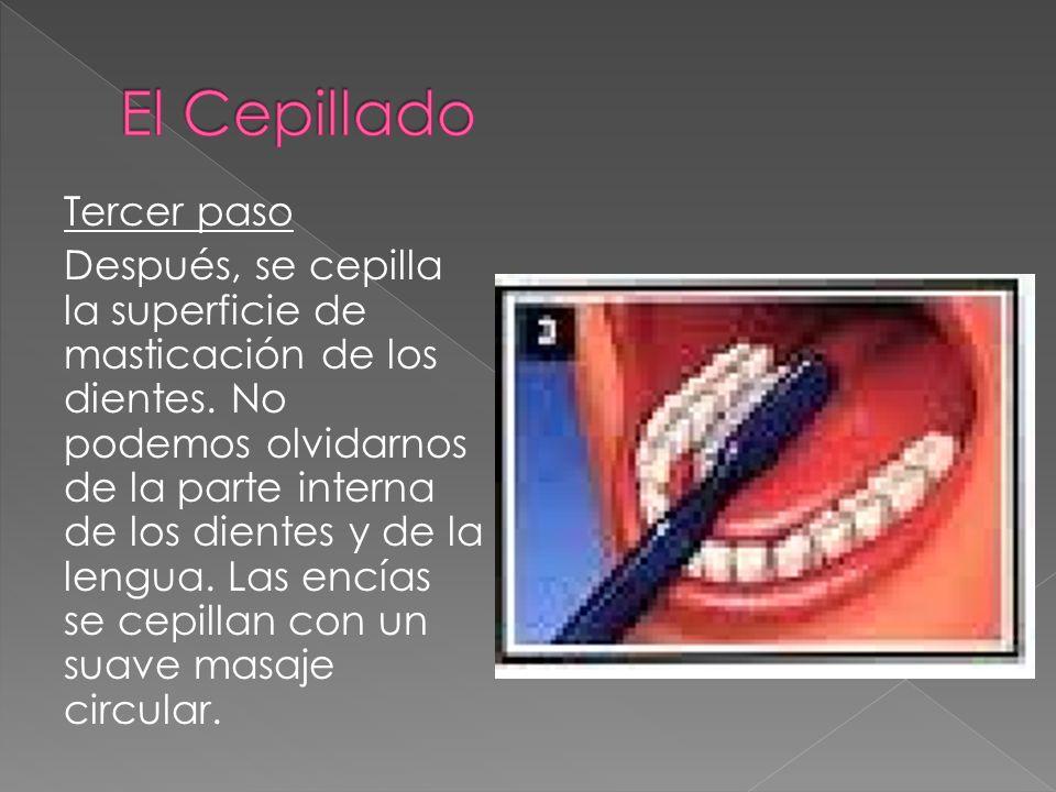 Tercer paso Después, se cepilla la superficie de masticación de los dientes. No podemos olvidarnos de la parte interna de los dientes y de la lengua.