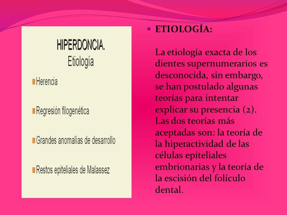 ETIOLOGÍA: La etiología exacta de los dientes supernumerarios es desconocida, sin embargo, se han postulado algunas teorías para intentar explicar su