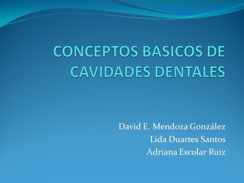 David E. Mendoza González Lida Duartes Santos Adriana Escolar Ruiz