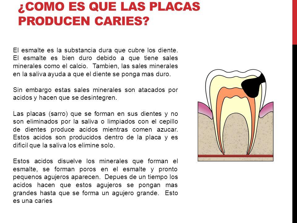 ¿COMO ES QUE LAS PLACAS PRODUCEN CARIES? El esmalte es la substancia dura que cubre los diente. El esmalte es bien duro debido a que tiene sales miner