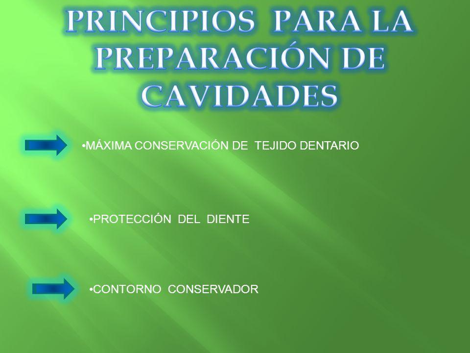 MÁXIMA CONSERVACIÓN DE TEJIDO DENTARIO PROTECCIÓN DEL DIENTE CONTORNO CONSERVADOR