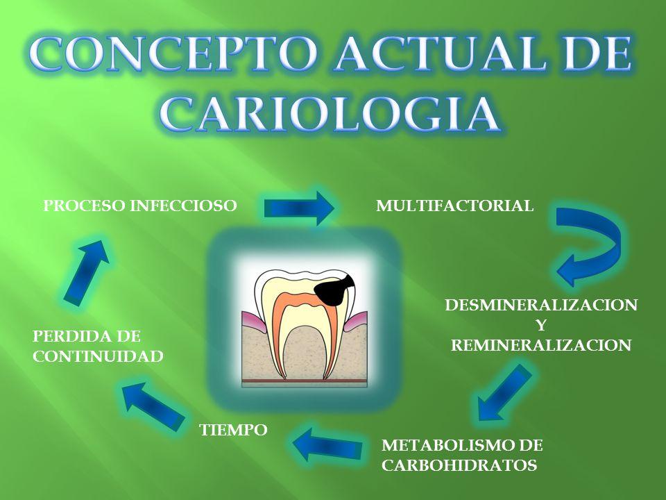 PROCESO INFECCIOSOMULTIFACTORIAL DESMINERALIZACION Y REMINERALIZACION METABOLISMO DE CARBOHIDRATOS TIEMPO PERDIDA DE CONTINUIDAD