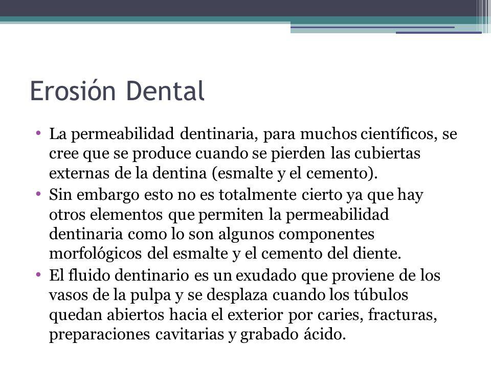 Erosión Dental La permeabilidad dentinaria, para muchos científicos, se cree que se produce cuando se pierden las cubiertas externas de la dentina (es