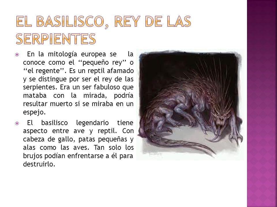 Encontrar a un basilisco era un símbolo de mala fortuna, ya que producía la muerte de familias enteras.