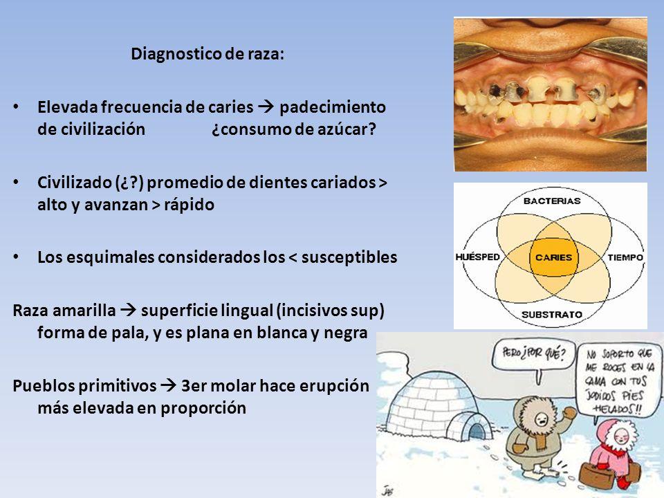 Diagnostico de raza: Elevada frecuencia de caries padecimiento de civilización ¿consumo de azúcar.