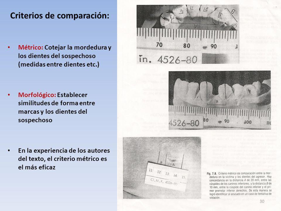 Criterios de comparación: Métrico: Cotejar la mordedura y los dientes del sospechoso (medidas entre dientes etc.) Morfológico: Establecer similitudes de forma entre marcas y los dientes del sospechoso En la experiencia de los autores del texto, el criterio métrico es el más eficaz 30