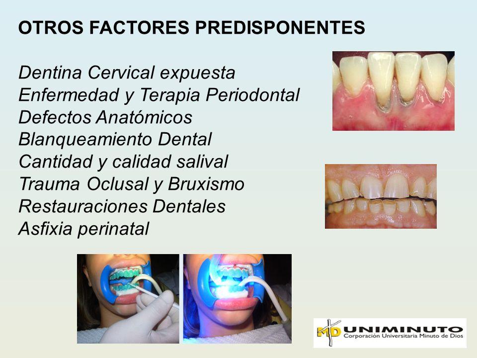 OTROS FACTORES PREDISPONENTES Dentina Cervical expuesta Enfermedad y Terapia Periodontal Defectos Anatómicos Blanqueamiento Dental Cantidad y calidad